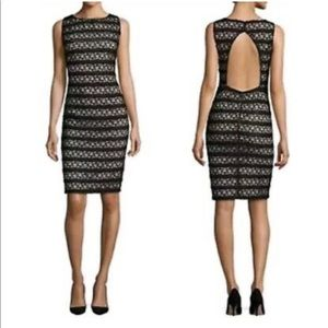 NWT Alice and Olivia Black Midi dress, size 10